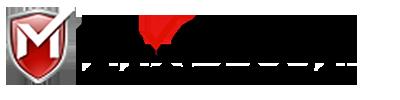 MaxSecure Logo